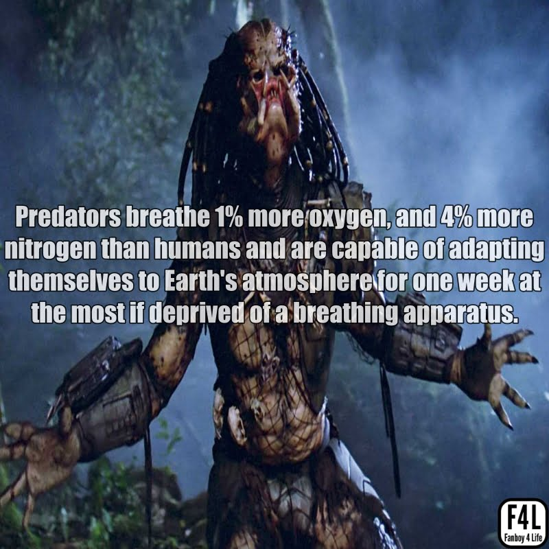 The Predator (Yautja): 20 Thrilling Facts 1