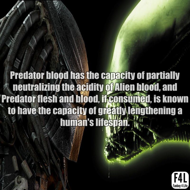 The Predator (Yautja): 20 Thrilling Facts 2