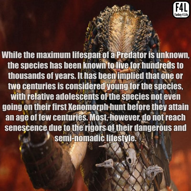 The Predator (Yautja): 20 Thrilling Facts 3