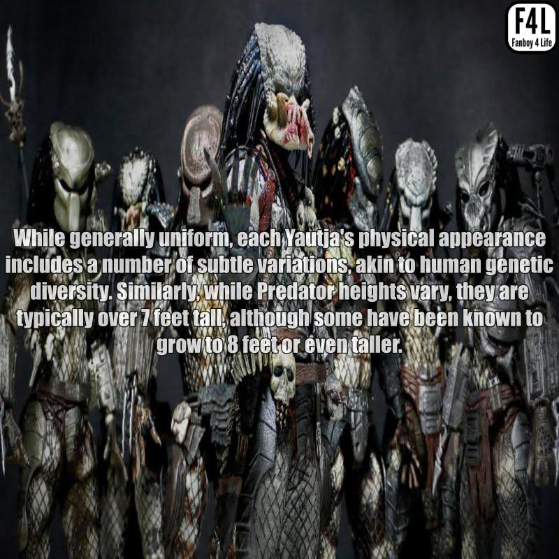 The Predator (Yautja): 20 Thrilling Facts 4