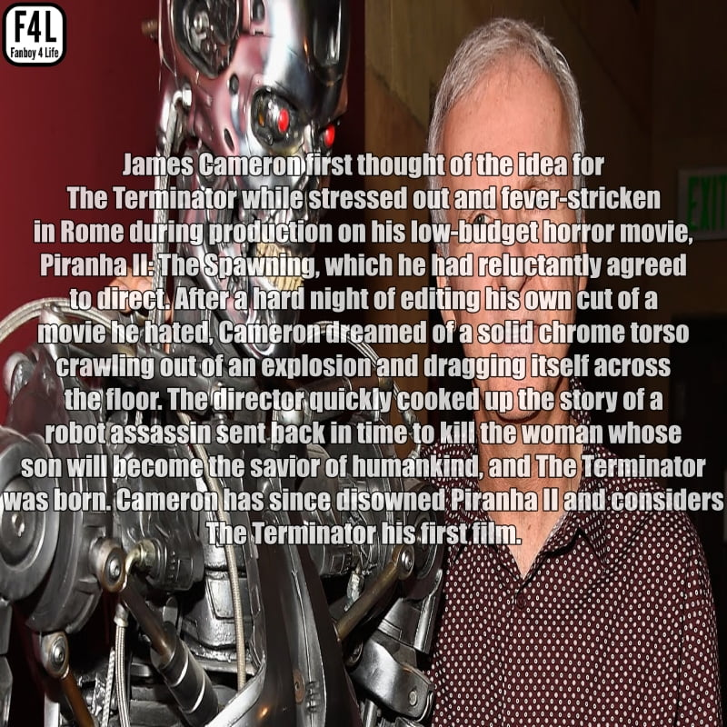 The Terminator (T-800): 15 Fascinating Facts 5
