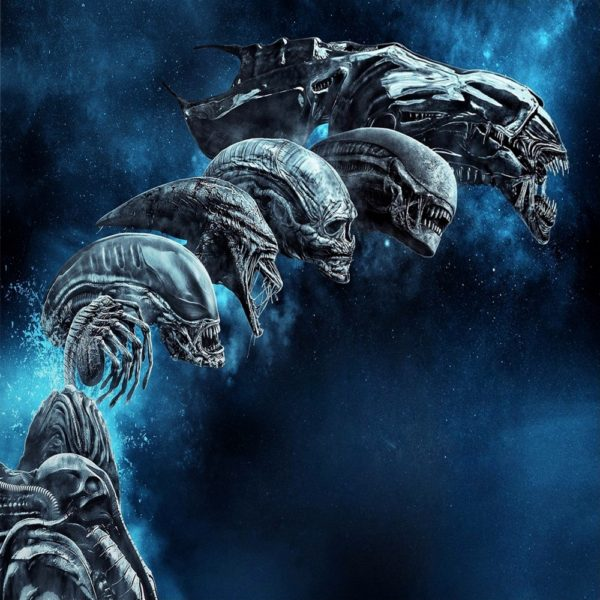 Read more about the article The Alien (Xenomorph): 15 Thrilling Facts