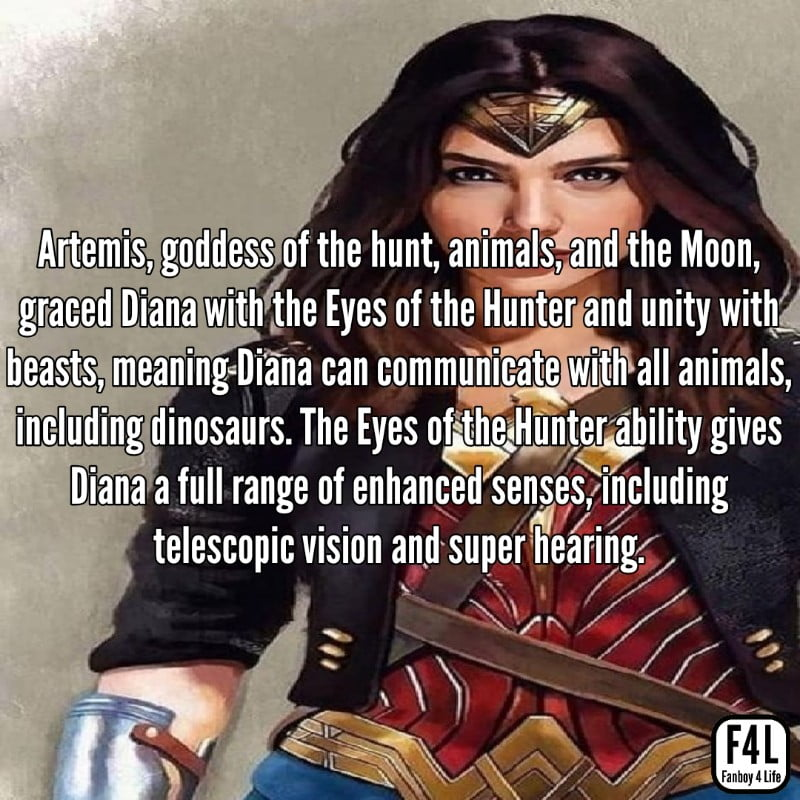 Wonder Woman: 30 Incredible Facts 7