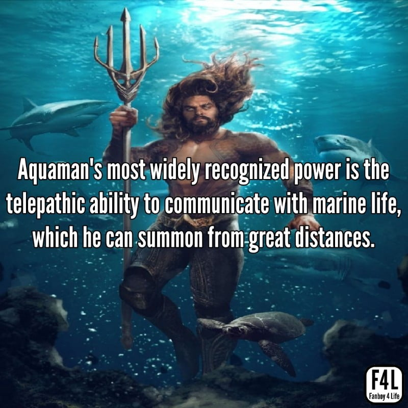 Aquaman in the sea