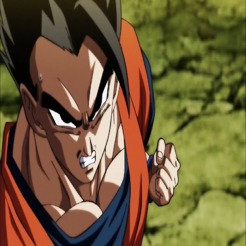 Read more about the article Gohan: 15 Awesome Facts